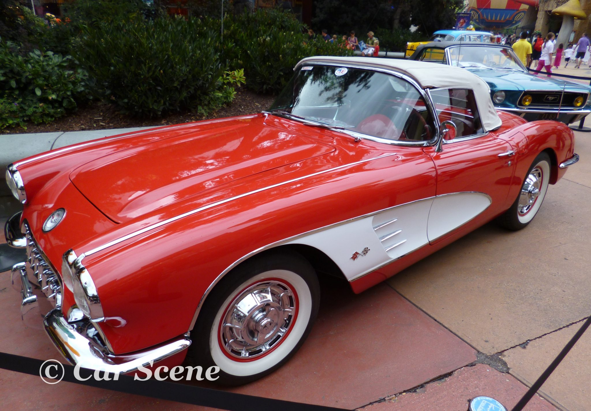 1959 Chevrolet Corvette side view