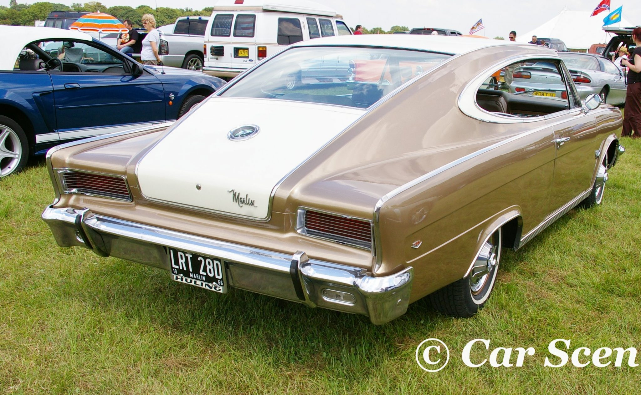 1966 AMC Marlin rear view