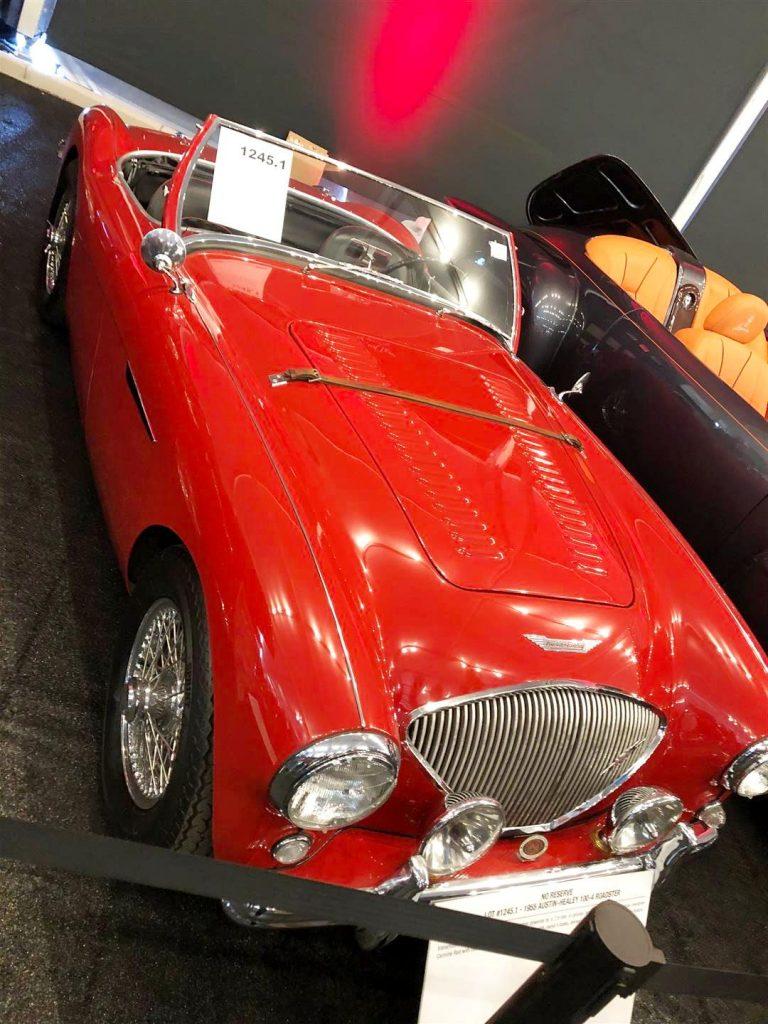 1955 Austin - Healey 100