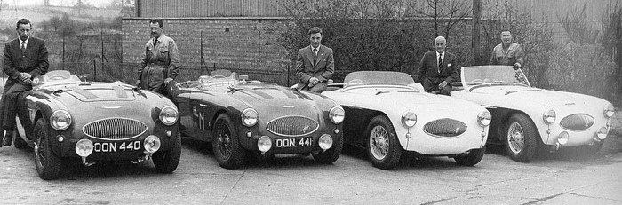 Austin Healey 100s at Warwick