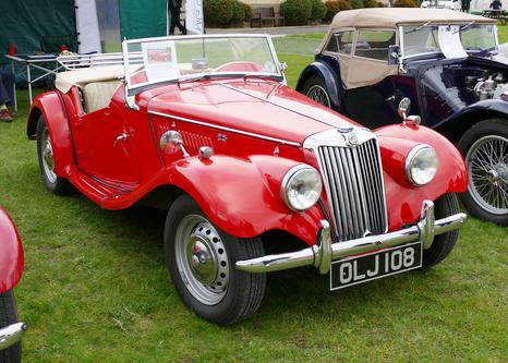 1953 -55 MG TF