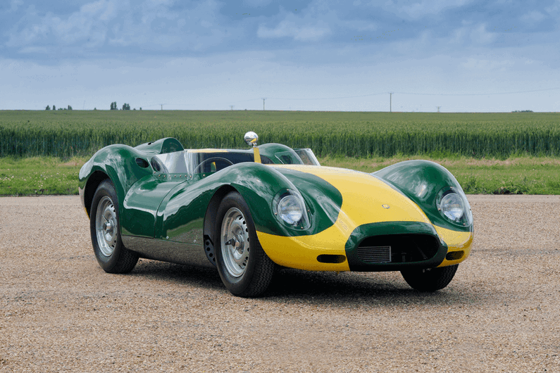 Lister knobbly 'Stirling Moss'Continuatio